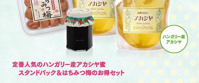 夏のわくわく蜜蜂箱